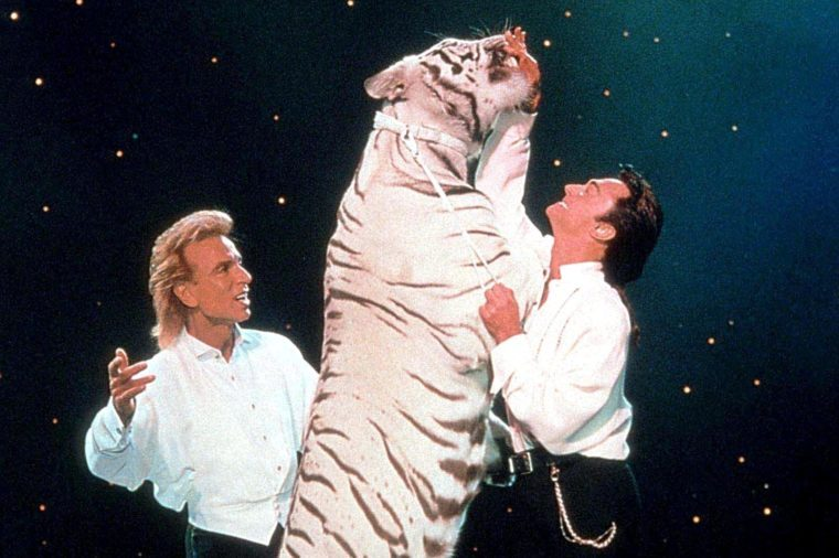 siegfriend and roy last performance