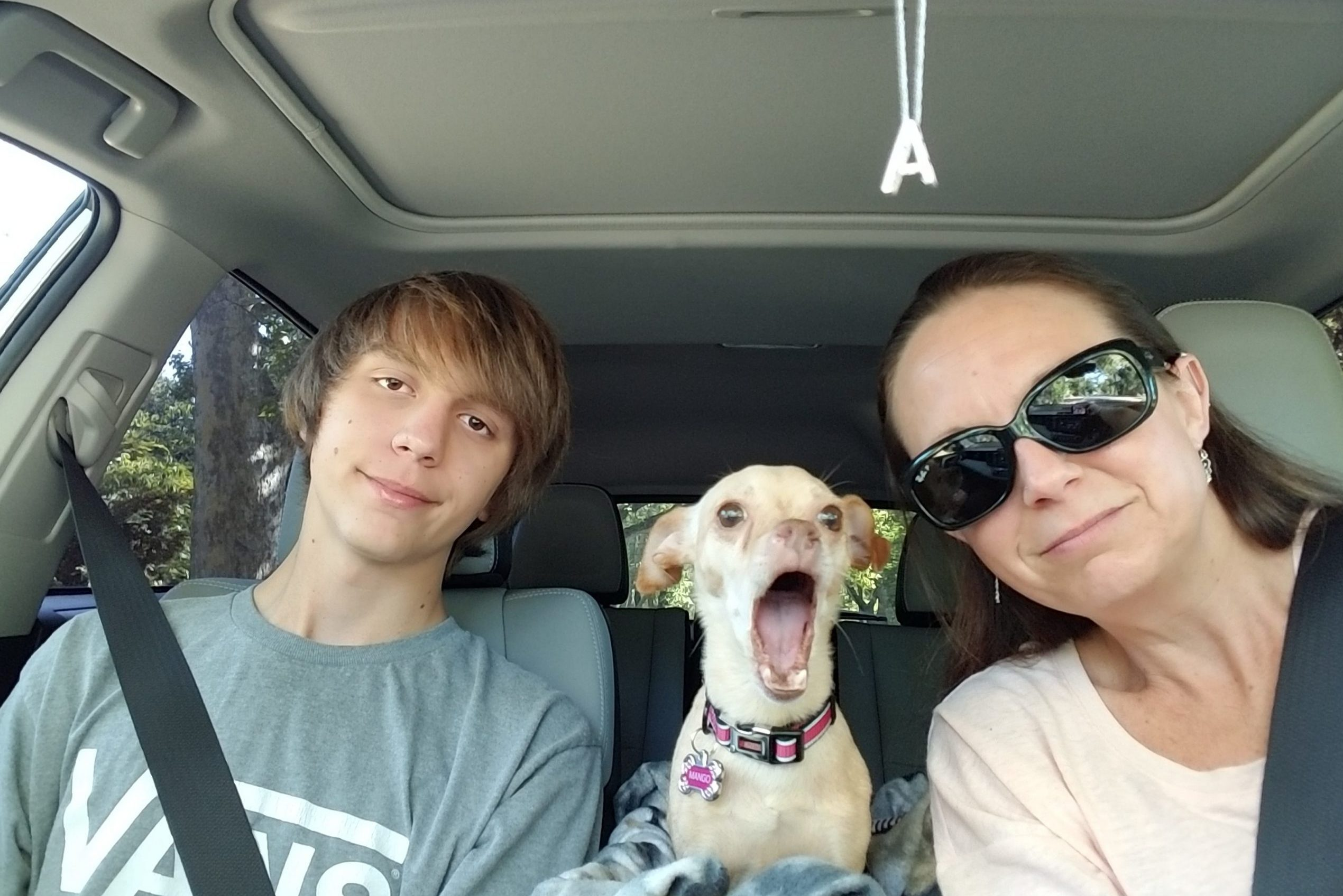 Mom and son in car with yawning puppy
