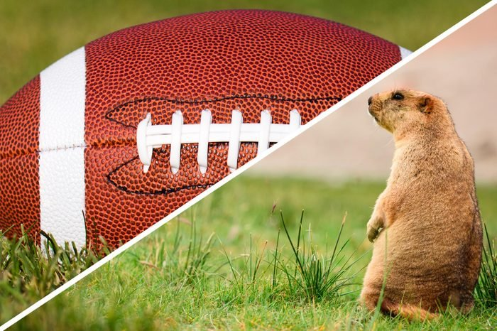super bowl groundhogs day double holidays