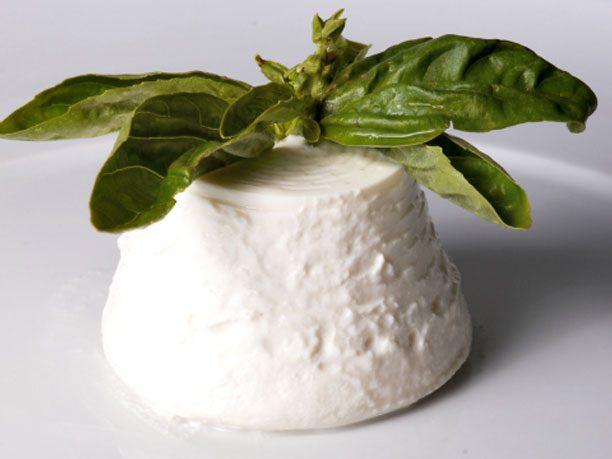 12. SECRET INGREDIENT: ricotta cheese