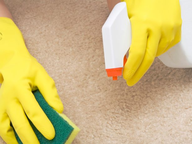 3. Remove Stains on Carpet