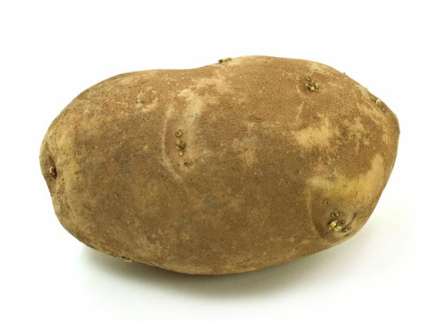 Potatoes 101: A Guide to the Most Common Varieties ...