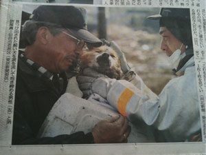 Japanese man reunited with puppy after earthquake and tsunami