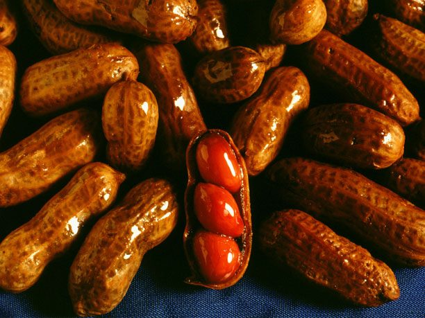 Bread and Butter Alternative #4: Boiled peanuts