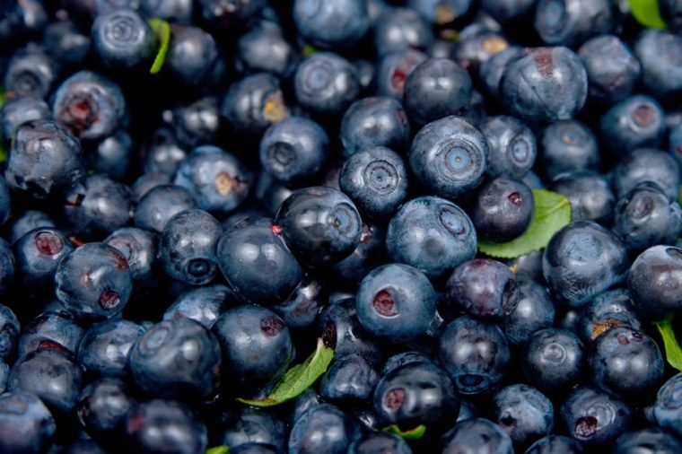The image of Bilberry on a white background