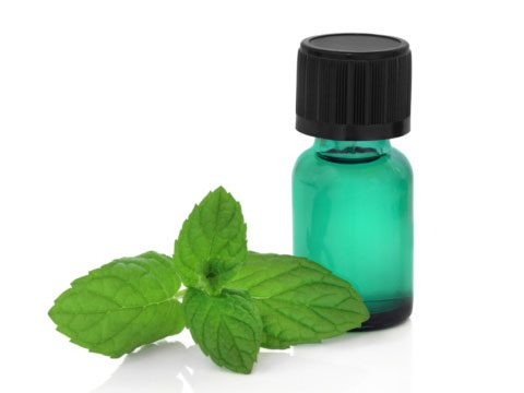 6. Put a drop of peppermint oil in your hand