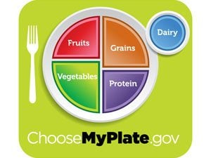 A Plate to Help You Make Healthy Eating Choices