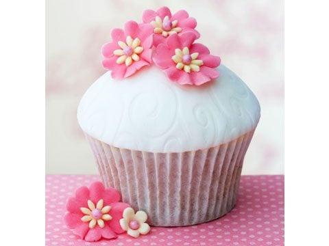 Cupcake Creator