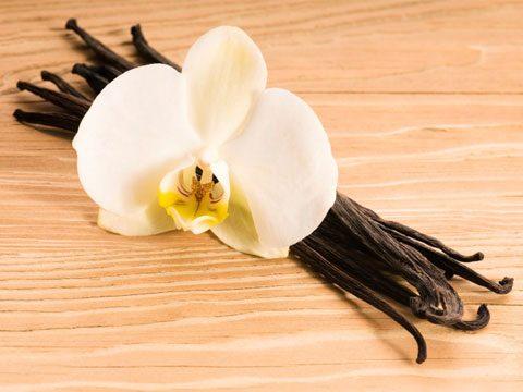 7. Vanilla