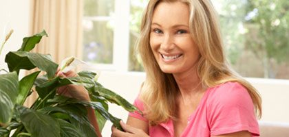 plan an indoor garden