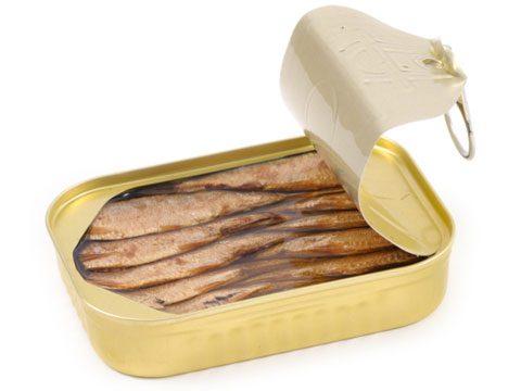 10. Sardines