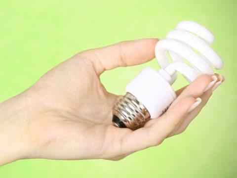 recycle hazardous CFL bulbs