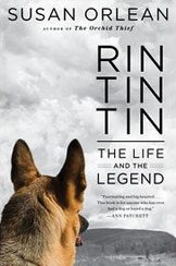 rin tin tin book cover