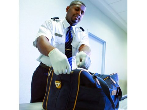 5. Transportation Security Screener