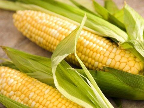 Corn: avoid