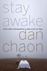 stay awake book cover