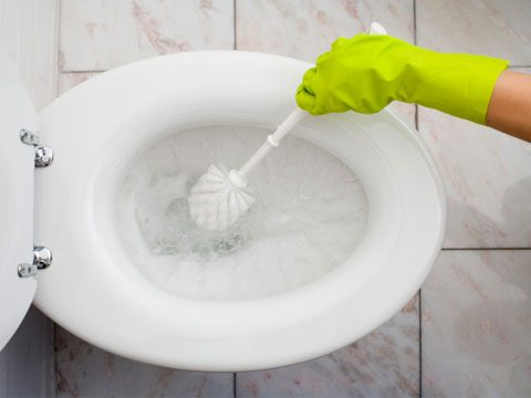 housecleaner secrets, cleaning toilet