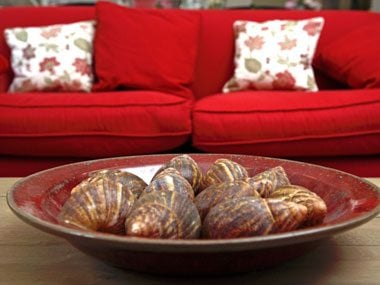 color psychology tips for your home red couch