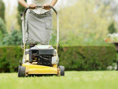 landscaper secrets lawn mower