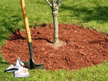 landscaper secrets red mulch