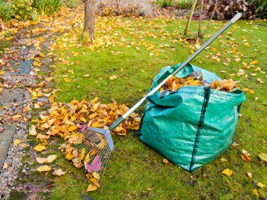 landscaper secrets bagging leaves