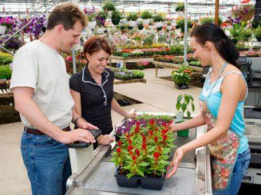 landscaper secrets buying flowers