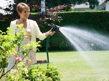landscaper secrets watering lawn