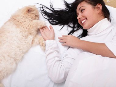 1. Why Do Cats Cry In the Middle of the Night?