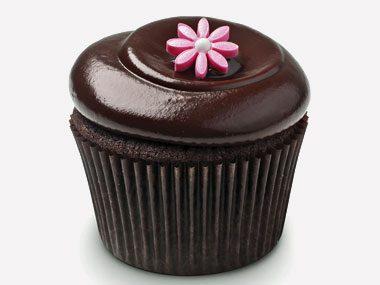 cupcake personality chocolate squared