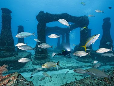 artificial reef essay Writing an essay on marine negative effects of artificial reefs artificial reefs are man-made habitats that are created from many different materials to.