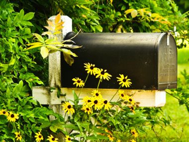 more mail carrier secrets, flowers mailbox
