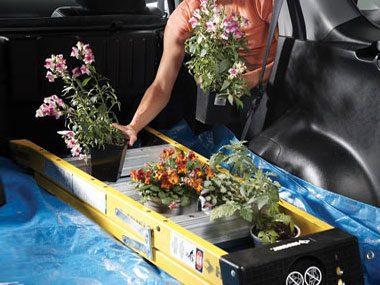 Transport Your Plants.