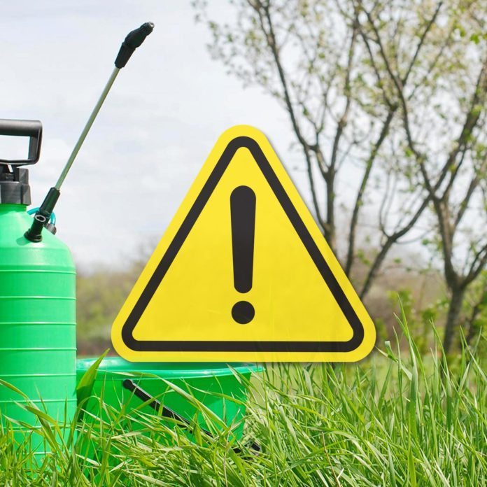 """5 """"Harmless"""" Things in Your Yard That Are Actually Toxic"""