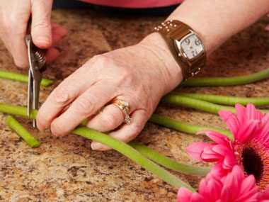 more florist secrets, cutting flowers