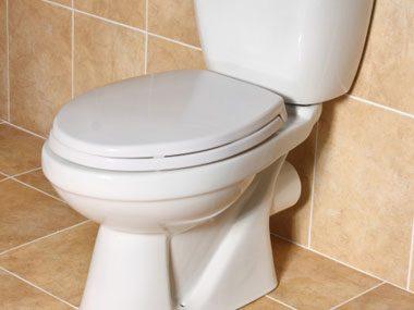 more plumber secrets, toilet