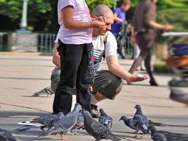 4. Feed the pigeons and you'll break the law in San Fransisco