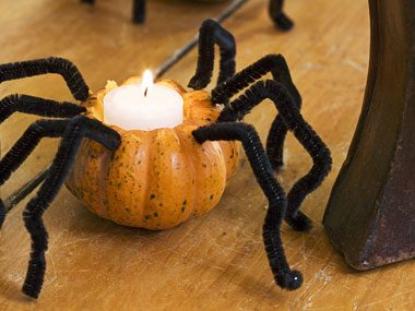 pretty bitty pumpkins with pipe cleaner spider