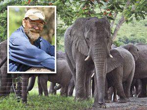 Hero Pets: A Herd of Elephants Mourns Its Helper