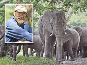 Hero Pets: A Herd of Elephants Mourns Its Helper