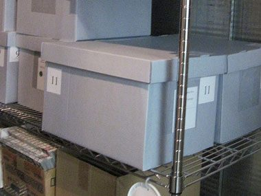 ornament storage tips, archival boxes