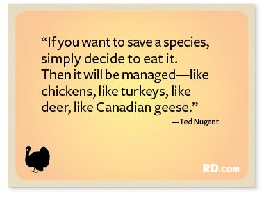 Ted Nugent with a Thanksgiving Quote