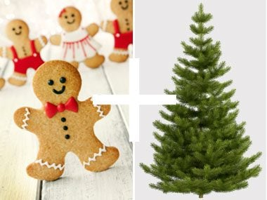 19 Wacky Ways to Decorate Your Christmas Tree