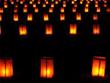 light the driveway