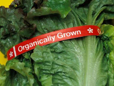 Less than 1% of all American crops are organic.