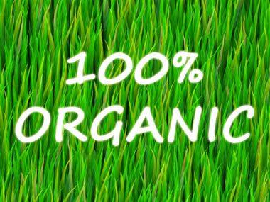 """""""Organic"""" doesn't mean 100% organic."""