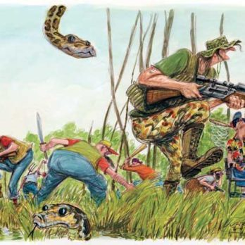 Reptile Dysfunction: Dave Barry Survives the Florida Python Challenge