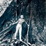 Survival Stories: The Girl Who Fell from the Sky