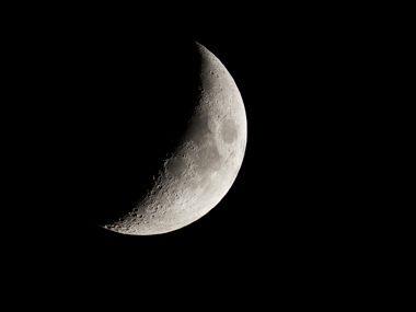 Lunula