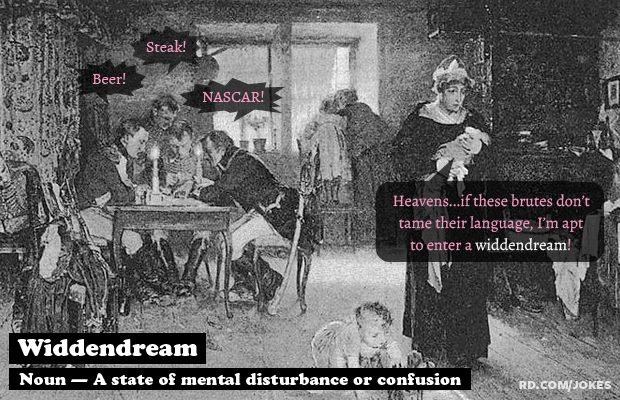 Widdendream-definition-funny-word