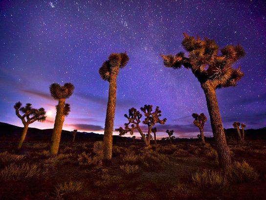 Star Gazing in Death Valley